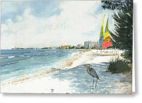 Blue Heron And Hobie Cats, Crescent Beach, Siesta Key - Greeting Card