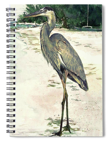 Blue Heron On Shell Beach, Siesta Key - Spiral Notebook