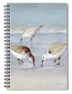 Breakfast On The Beach, Snowy Plover Sandpipers, Siesta Key, Wide-narrow - Spiral Notebook