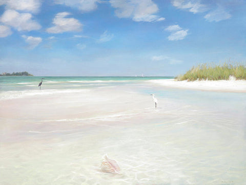 No. Siesta Key, Big Pass, So. Lido Beach - Art Print