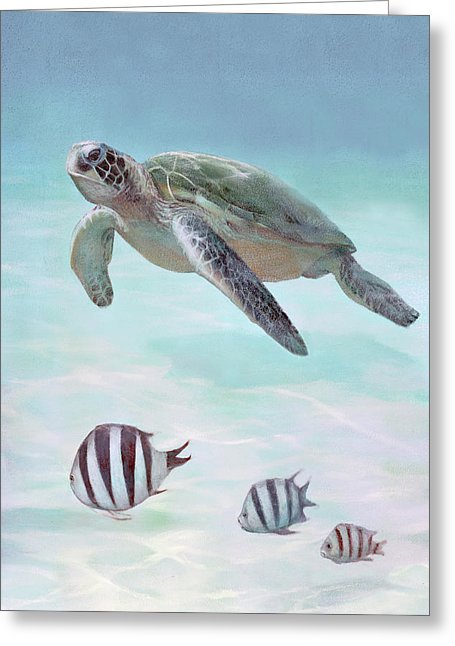 Siesta Key Loggerhead Turtle - Greeting Card
