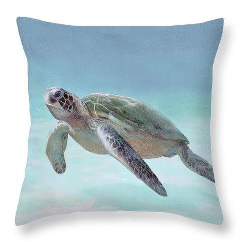Siesta Key Loggerhead Turtle - Throw Pillow
