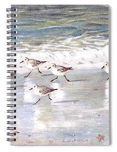 Snowy Plover Sandpipers On Siesta Key Beach - Spiral Notebook