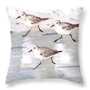 Snowy Plover Sandpipers On Siesta Key Beach, Wide-narrow - Throw Pillow