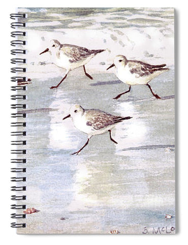 Snowy Plover Sandpipers On Siesta Key Public Beach - Wide - Spiral Notebook