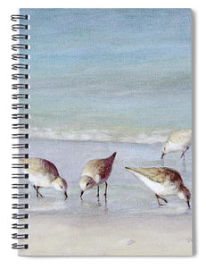 Breakfast On The Beach, Snowy Plover Sandpipers, Siesta Key - Spiral Notebook