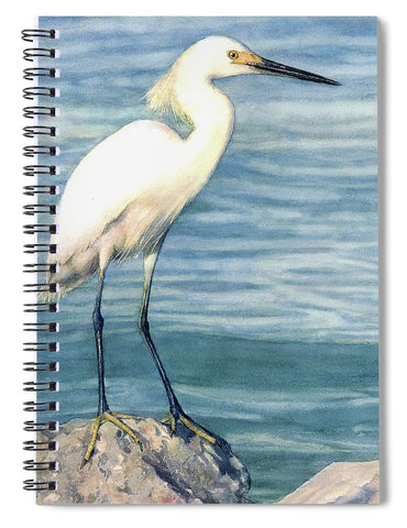 Snowy White Egret On Siesta Key - Spiral Notebook