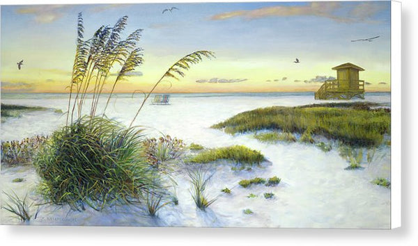 Sunset And Sea Oats At Siesta Key Public Beach -wide - Canvas Print