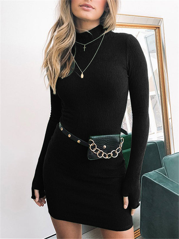 Turtleneck Long Sleeve Bodycon Dress