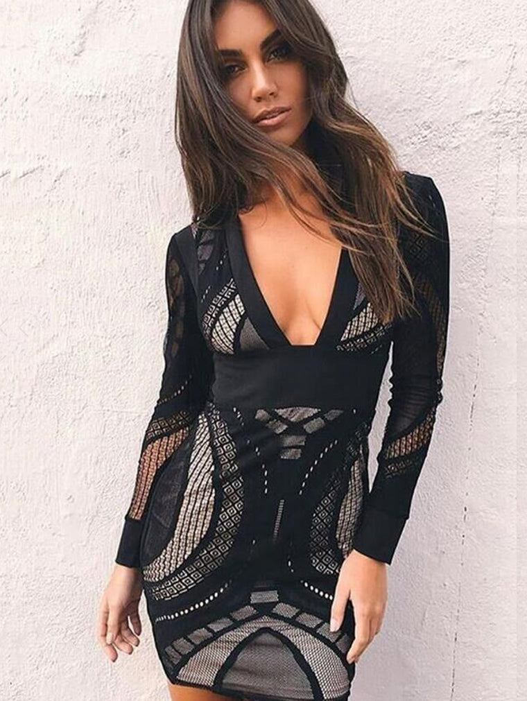 Embroidered Long Sleeve V-neck Lace Bodycon Dress