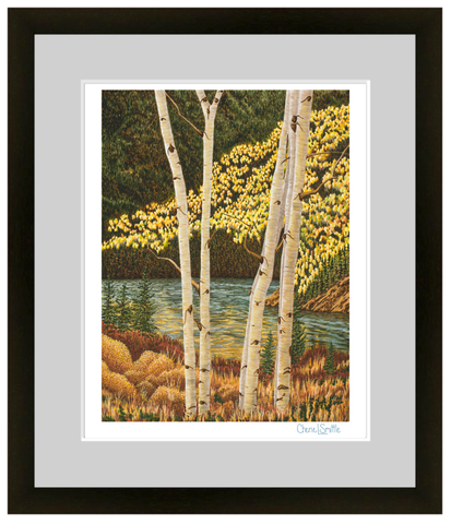 fine art print, colorado artist, colorado art, colorado artwork : aspen trees, fall trees, fall colors, silverthorne colorado