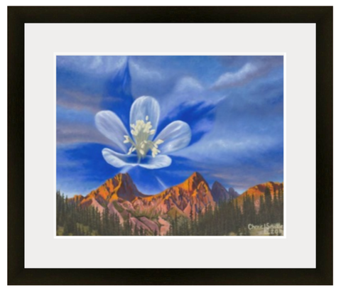 columbine, columbine flower, needle mountain range colorado, mountain range, colorado mountains, colorado sunrise, colorado artist, colorado art, colorado artwork