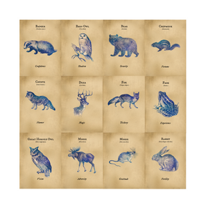 PREORDER: The Woodland Animals Oracle