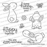 Newton's Nook clear acrylic stamp set & metal dies - Bitty Bunnies, Made in USA