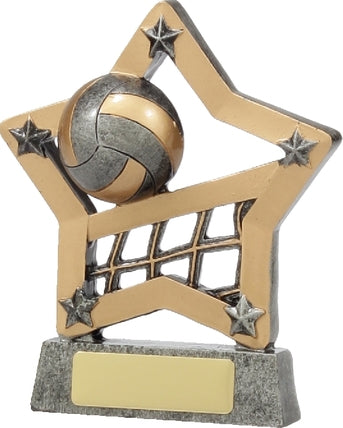12927 Volleyball Trophy