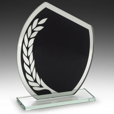 W879 Glass Award