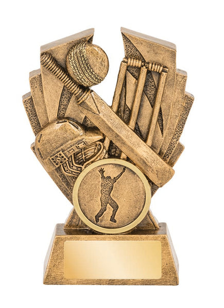 16564 Cricket Trophy
