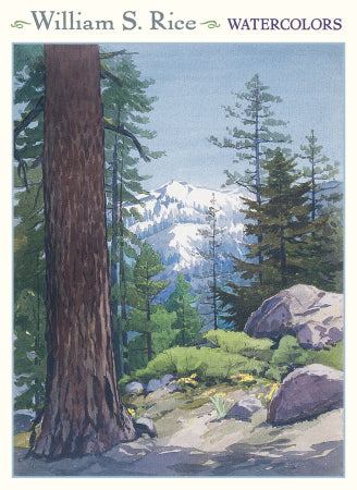 "<p>Set of twenty assorted 5"" x 7"" note cards (5 each of 4 designs) plus white envelopes in a decorative card box featuring watercolours by William S Rice.</p>"