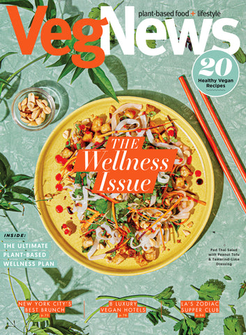 The 2020 Wellness Issue (#121)