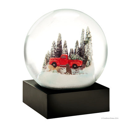 Cool Snow Globe Red truck w/dog - Annas Rom