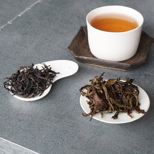 Osmanthus Dancong Spring 2018 (Connoisseur Selection)