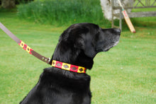 POLO-STYLE DOG COLLAR