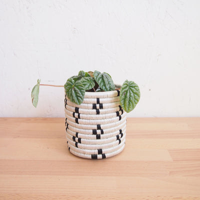 Maraba Planter Baskets