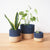 Island Planter Baskets (Set of 3)