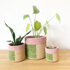 Busoro Planter Baskets