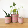 Muyaga Planter Baskets (Set of 3)