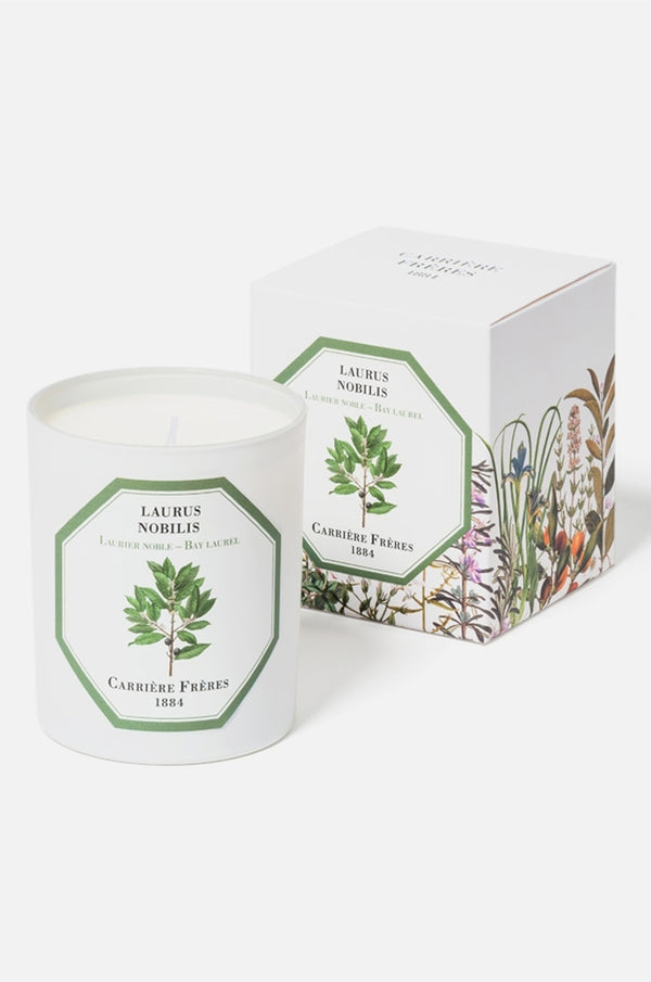 Carriere Freres Bay Laurel candle.