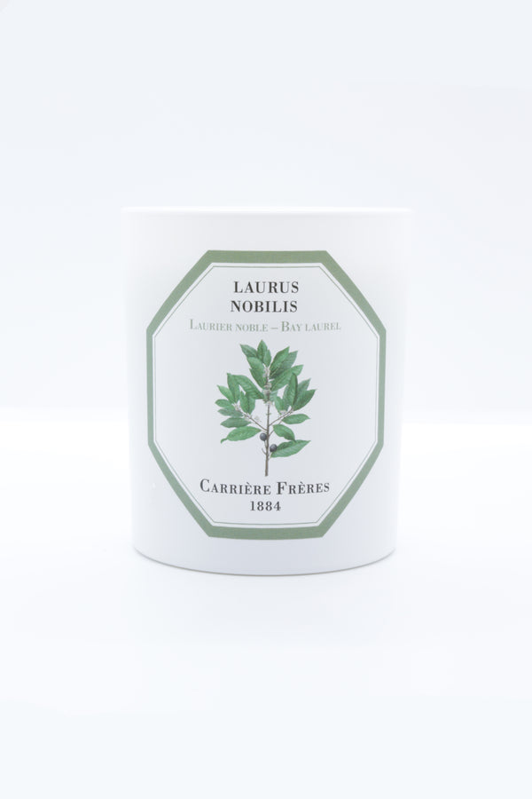 Carriere Freres Candle in bay laurel.