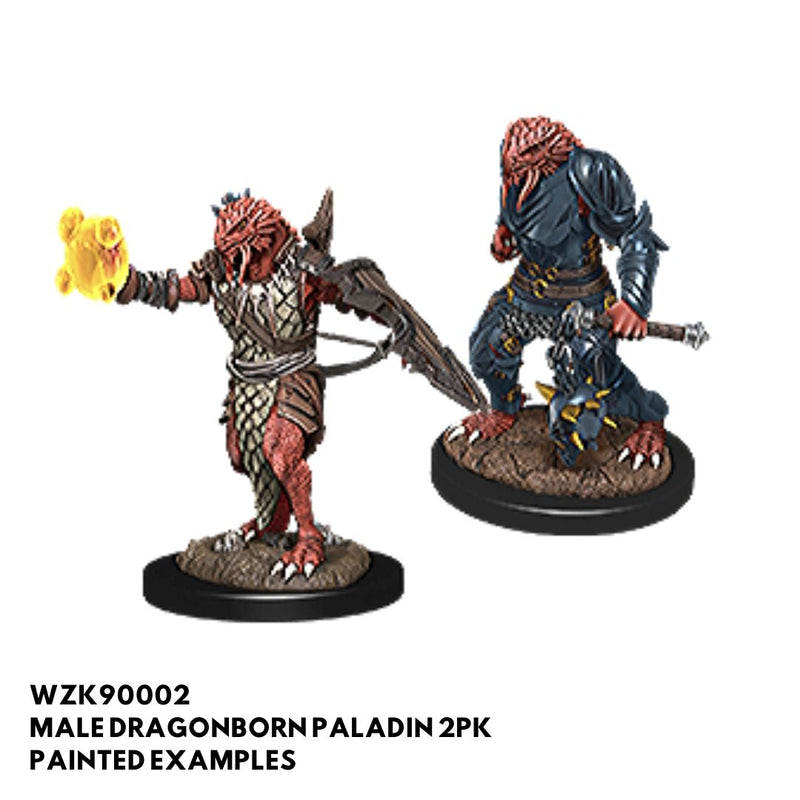 d&d miniatures - male dragonborn paladin