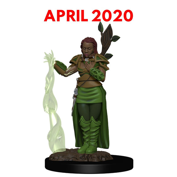 female Human Druid - D&D Prepainted premium miniature