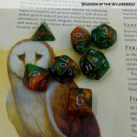 DnD Dice - Warden of the Wilderness - on 5e players handbook