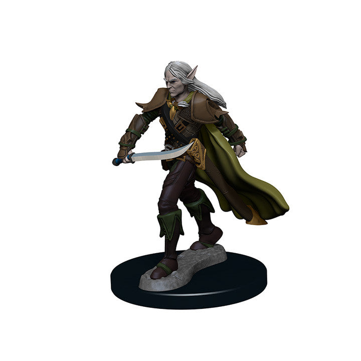 Pathfinder Miniatures - Male Elf Fighter Sword - painted
