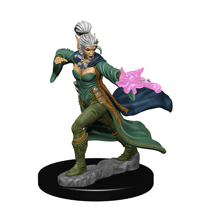 Pathfinder Miniatures - Female Elf Sorcerer - painted