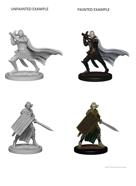 Pathfinder Miniatures - Male Elf Paladin