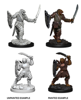D&D Minis - Female Dragonborn Paladin with Sword & Shield