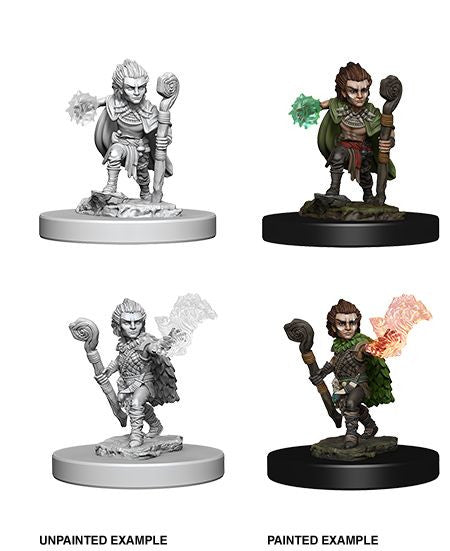 Pathfinder Miniatures - Male Gnome Druid