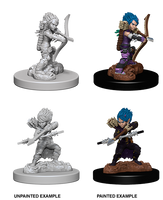 Pathfinder Miniatures - Female Gnome Rogue
