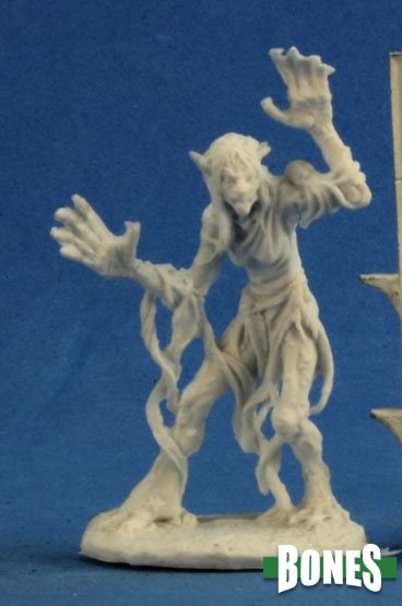 D&D Miniatures - Sea Hag