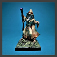 Reaper Miniatures - Male Human Wizard - painted