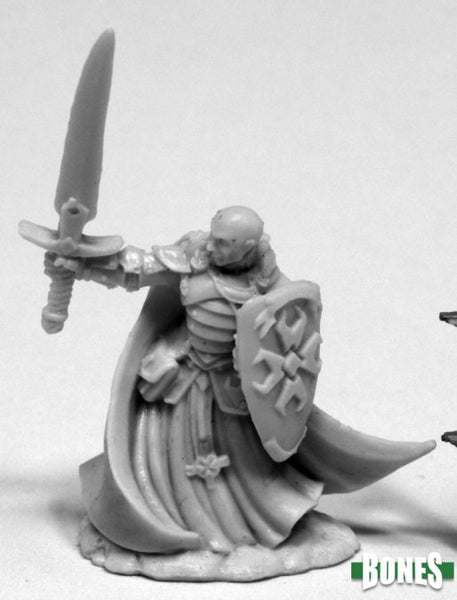 Reaper Miniatures - Male Human Paladin sword shield