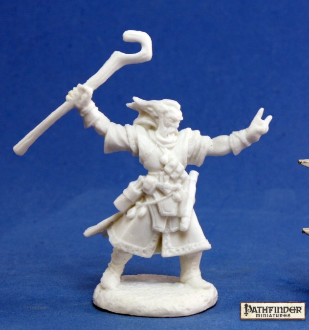 Reaper Miniatures - Male Human Wizard