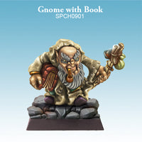 Spellcrow Male Gnome Wizard - painted