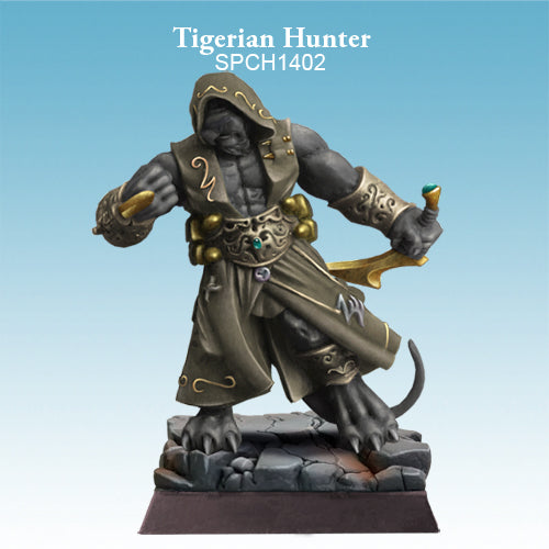 Spellcrow Tigerian - Tabaxi Rogue painted
