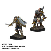 D&D Minis - Male Human Paladin 2pk - Painted