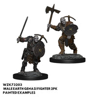 Pathfinder Miniatures - Male Earth Genasi Fighter - Painted