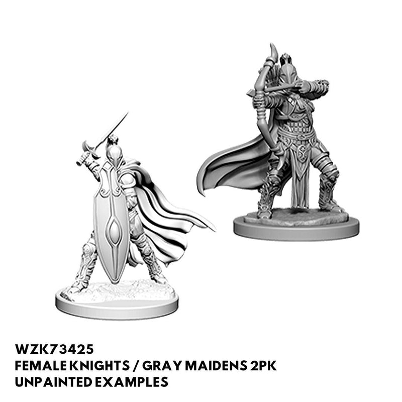 Pathfinder Minis -Female Knights Gray Maidens - Unpainted